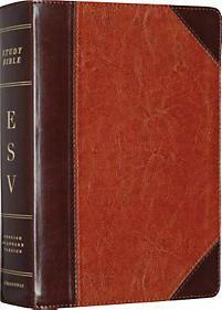 ESV Study Bible, Personal Size   Crossway Bibles   LifeWay Christian