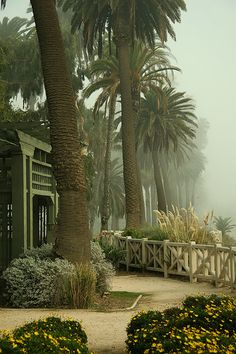Palisades Park, Santa Monica by 2laneblacktop, via Flickr