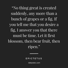Epictetus Quotes | 109 Best Epictetus Quotes Images In 2019 Life Philosophy Lyrics