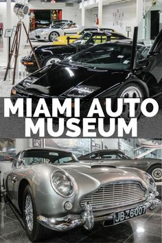 Looking for what to do in Miami? We have the 25 best things to do in Miami including a list of all the top Miami Attractions and an interactive Miami Map Usa Travel Guide, Travel Usa, Travel Tips, Travel Destinations, Travel Advice, Miami Map, Miami City, Visit Florida, Florida Travel