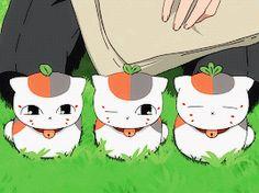 World of Our Fantasy Natsume Takashi, Hotarubi No Mori, Natsume Yuujinchou, Kawaii Cat, Manga, Anime Love, Chibi, Pikachu, Family Guy