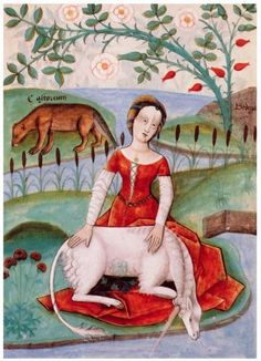 "Dame à la Licorne, from ""Bestiaire d'Amours"" de Richard de Fournival, 1470, Paris au Musée national du Moyen Âge ; . you can read ""castoreum"" on the background."