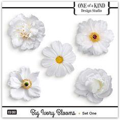 Big Ivory Blooms  | CU/Commercial Use #digital #scrapbook design tools at CUDigitals.com #digitalscrapbooking