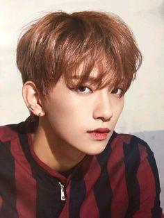 Woozi, Jeonghan, Wonwoo, Seungkwan, Jisoo Seventeen, Joshua Seventeen, Seventeen Debut, Hip Hop, K Pop