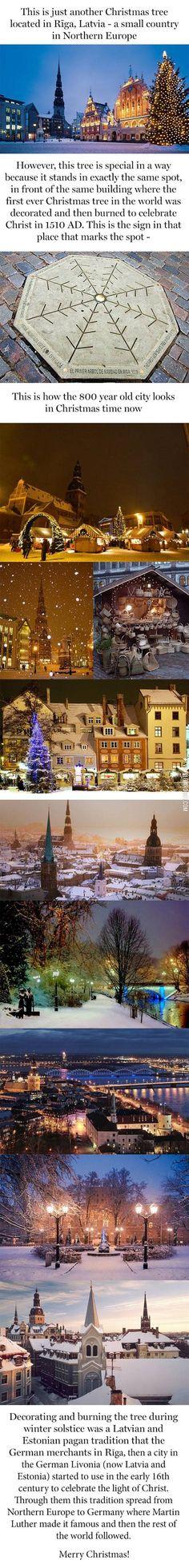 The Place, - Riga, Livonia (Now Latvia & Estonia) Of The THE FIRST CHRISTMAS TREE!