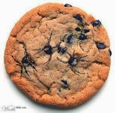 spider chocolate chip cookies toothpick | Use a toothpick to drag out 'legs' from the melted chocolate chips ...