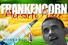 While they distracted you with the gay marriage debate, Obama secretly signed the MONSANTO PROTECTION ACT into law to poison the American food supply http://www.nowtheendbegins.com/blog/?p=13539