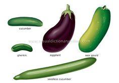 Fruit vegetables 3