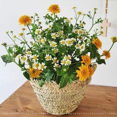 Des fleurs dans un panier en osier