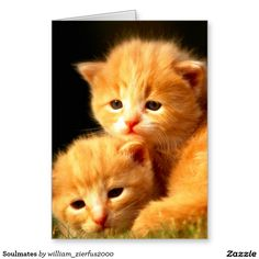 Soulmates Greeting Card