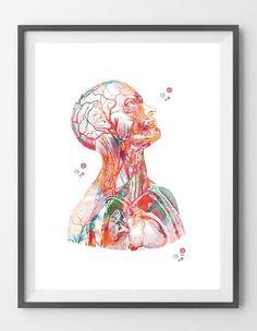Menschlicher Kopf und Torso Anatomie Kunstdruck Kopf Hals und | Etsy Wall Art Prints, Fine Art Prints, Human Anatomy Art, Dental Art, Human Head, Medical Art, A Level Art, Head And Neck, Science Art