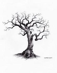 Welcome to Owentree Sketches! Where I post my Fine Art Drawings of Trees. These sketches including: Willow, Maple, Pine, Birch, Bonsai and Oak Tree Drawings. Oak Tree Drawings, Tree Drawings Pencil, Pencil Trees, Tree Sketches, Art Drawings Sketches, Drawing Trees, Tree Pencil Sketch, Tree Drawing Simple, Tree Artwork