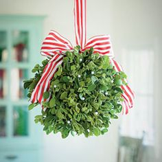 Use your leafy bounty to craft an im-peck-able Christmas decoration.