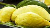 How To Choose Your Perfect Durian   food for life tv   Video Recipes, Local Dishes, Kitchen Hacks
