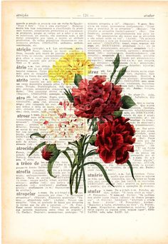 Wall art Vintage Illustration Carnations bouquet  collage Print on Vintage Book page