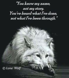 😢😢This poor wolf looks sooo tired and sooo alone. Sassy Quotes, True Quotes, Great Quotes, Inspirational Quotes, Wolf Spirit, Spirit Animal, Lone Wolf Quotes, Wolf Qoutes, Of Wolf And Man