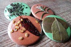 Motiv: *Getrocknete Gewürze und Kräuter* mit Rosmarin, Chili, Lorbeer und Kümmel.    *Die Buttons sind mit echten Kräutern und Gewürzen hergestellt!*