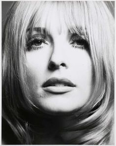 Sharon Tate - American actress and sex symbol. Photo 1967 by Philippe Halsman, 1966 Sharon Tate, Tony Curtis, Charles Manson, David Bailey, Richard Avedon, Magnum Photos, Katharine Hepburn, Audrey Hepburn, Betsey Johnson