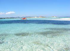 Espalmador Island, Platja de s'Alga (s'Alga beach, Balearic Islands, Spain #Espalmador #Platja #Salga #Balearic #Spain #Maladeviagem