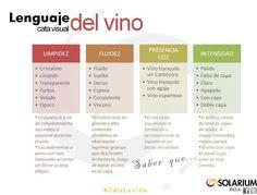 Infografia Lenguaje cata visual del vino. @SolariumRioja