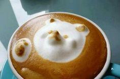 This polar bear peeking out through your latte is fab. I luv Coffee Latte Art! Coffee Latte Art, I Love Coffee, Best Coffee, My Coffee, Cappuccino Art, Coffee Milk, Coffee Cups, Cute Food, Yummy Food