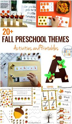 autumn lesson plans and activities education world