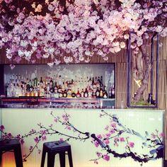 Sakura pop-up at Sake No Hana Japanese Restaurant in London