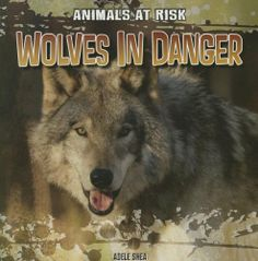 Wolves in Danger (Animals at Risk) by Adele Shea $8.15 http://smile.amazon.com/dp/1433991799/ref=cm_sw_r_pi_dp_MUOOtb0HXJ55AD70
