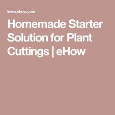 Homemade Starter Solution for Plant Cuttings   eHow