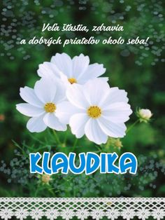 Klaudika - prianie k meninám November, Plants, November Born, Plant, Planets