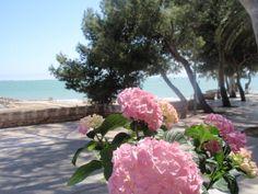 20 Tarragona Ideas Tarragona Spain Spain Travel