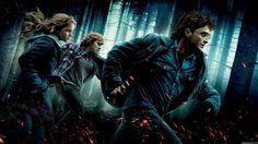 Harry Potter/wiwigo