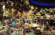 The Rainforest Cafe adventure incorporates dining amongst  dramartic waterfalls, majestic rock formations and a starscape  that has shooting stars and changing constellations