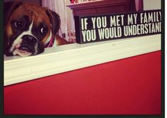 Boxer love - our baby girl!