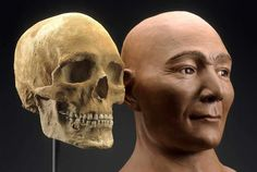 Kennewick Man. 9,200 year old remains from by Columbia River, in WA.