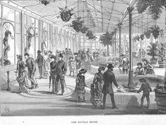 Victorian menagerie - the reptile house