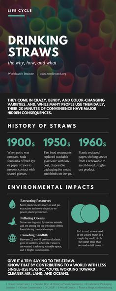 Straws Life Cycle Infographic