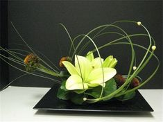 Unique modern simple green # green - World News Contemporary Flower Arrangements, White Flower Arrangements, Creative Flower Arrangements, Ikebana Flower Arrangement, Ikebana Arrangements, Flower Show, Flower Art, Arreglos Ikebana, Corporate Flowers