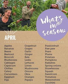 What seasonal produce are you looking forward to this month? @australianorganic #blueberries #shoplocal #eatyourveggies