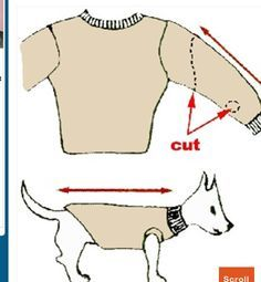 Turn Old Sweater Into Pet Clothes pets crafts craft ideas easy crafts diy ideas diy crafts diy clothes easy diy fun diy diy shirt craft clothes craft fashion craft shirt fashion diy pet crafts Positive Dog Training, Training Your Dog, Training Tips, Old Sweater, Dog Sweaters, Alter Pullover, Dog Clothes Patterns, Puppy Clothes, Small Dog Clothes