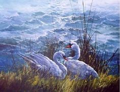 PBS-Artist-Jerry-Yarnell-Evening-Swans-Instructional-dvd-in-acrylics
