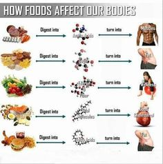 How food affects your body!