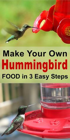 Woodworking For Kids Homemade Hummingbird Nectar - DIY sugar water ratio for the best hummingbird food.Woodworking For Kids Homemade Hummingbird Nectar - DIY sugar water ratio for the best hummingbird food. Homemade Hummingbird Nectar, Homemade Hummingbird Food, Hummingbird Sugar Water, Hummingbird Feeder Food, Sugar Water For Hummingbirds, Food Feeder, Woodworking For Kids, Woodworking Plans, Woodworking Projects