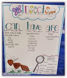 What's the Bug Deal?  (Science Anchor Chart about Insects)