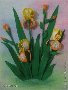 Картина, панно, рисунок Бумагопластика, Квиллинг: Ирисы Бумага гофрированная, Бумажные полосы. Фото 1