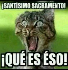 Santísimo Sacramento, que es eso....