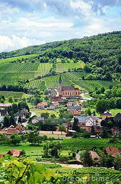 Vineyard and small village in Alsace, France | Katarzna Mazurowska, Dreamstime