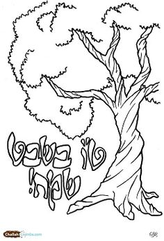 tu bshvat greetings sunday schoolcoloring pages