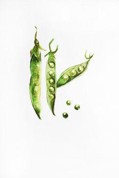 Original Watercolor Painting, minimalism Organic art, Vegetables art, peas delicious art, Kitchen decor, watercolor green pea, Art OOAK by MaryArtStudio on Etsy