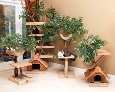 great ideas to replace the Christmas tree that was our cat's favorite place to hang out this winter!